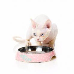 Mačje posode